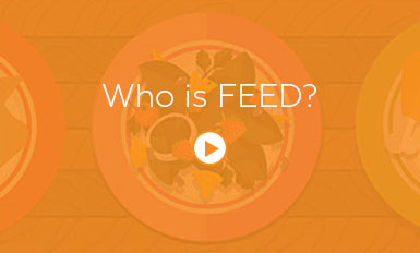 Video-Cover-for-Homepage-who-is-feed
